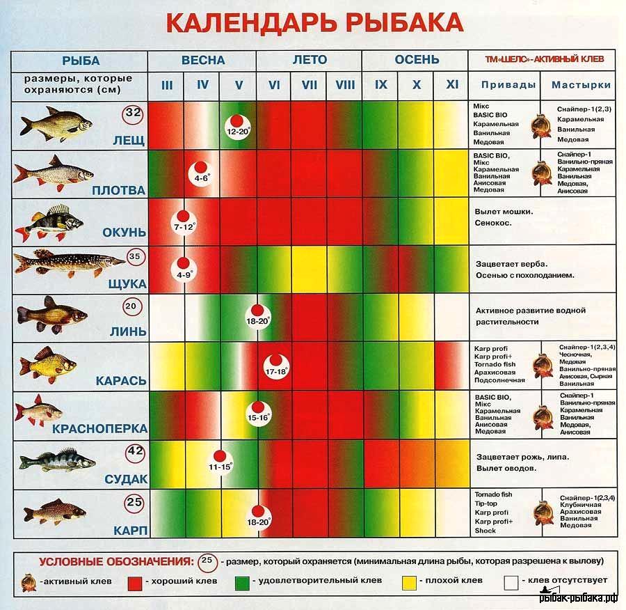 какое давление самое лучшее для клева рыбы