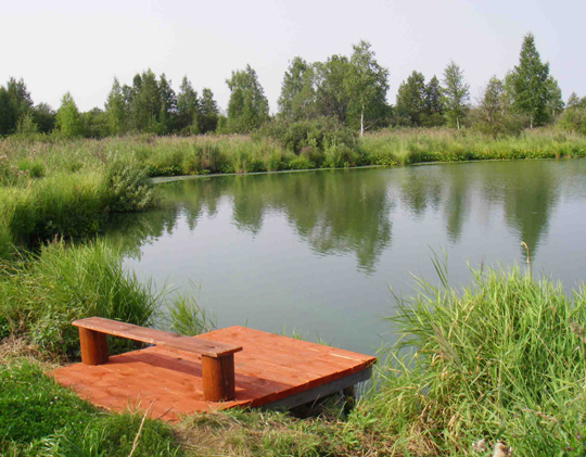 сделать пруд своими руками для рыбалки